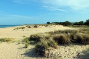 Studland-beach