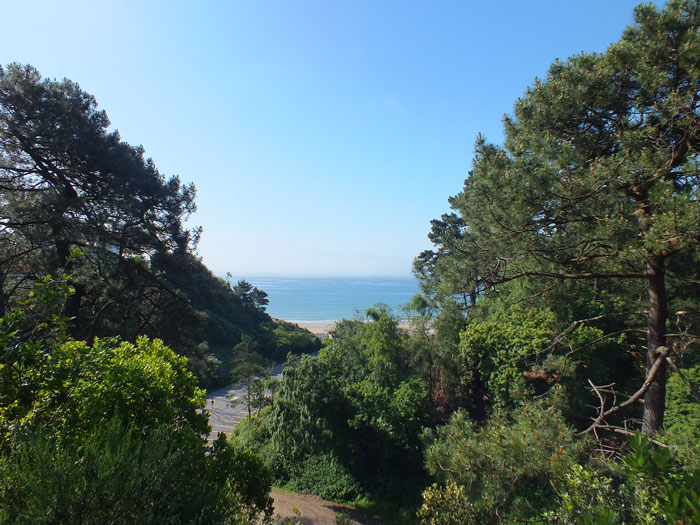 Branksome Dene Chine